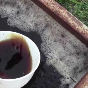 первая подкормка винограда органическими удобрениями