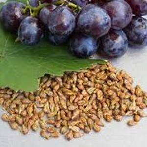 виноград и его косточки