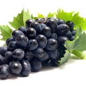 выращивание винограда в частном хозяйстве