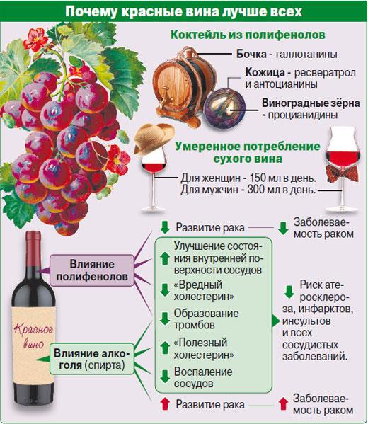 влияние красного вина