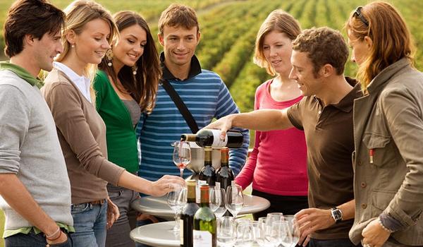 сомелье на виноградниках