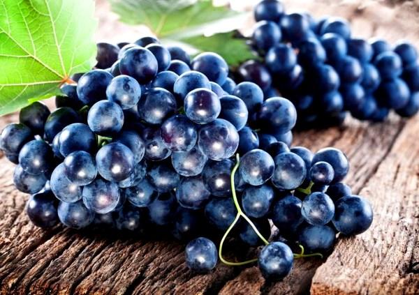 темный сорт винограда