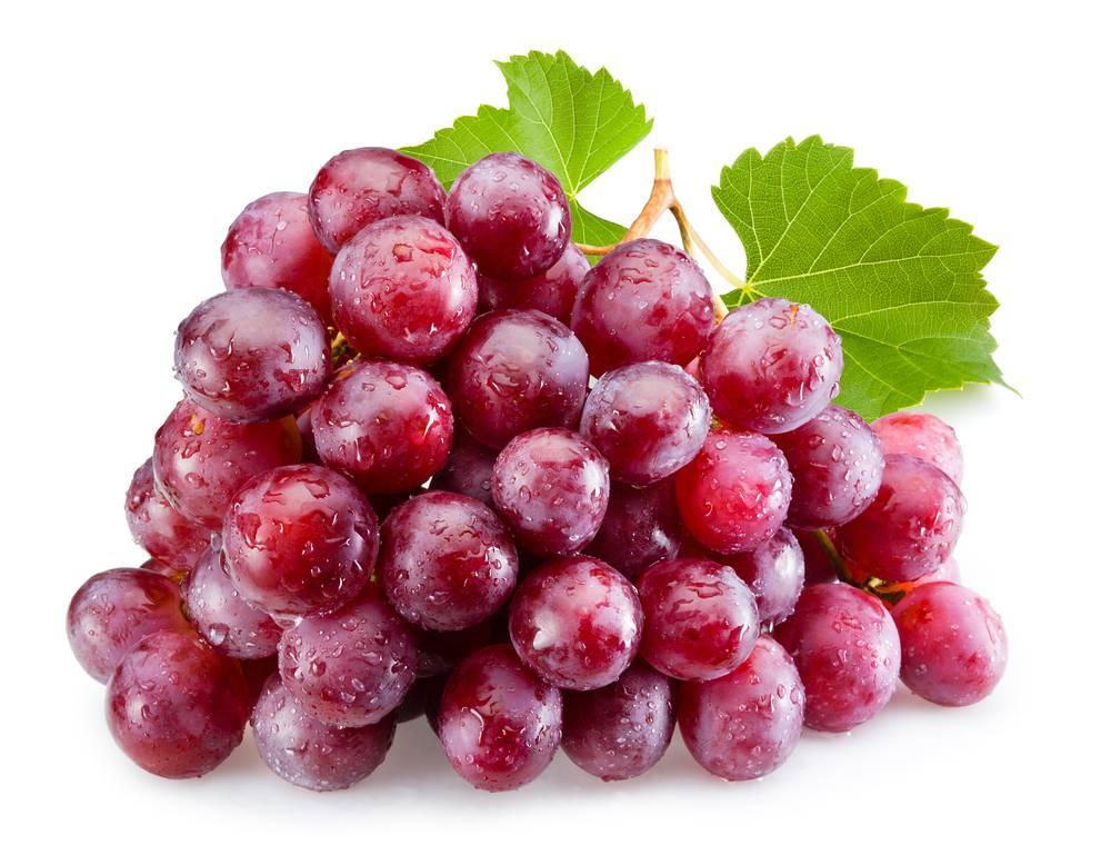 ягоды винограда ред глоб