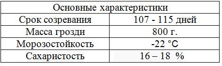 таблица виноград Наталья