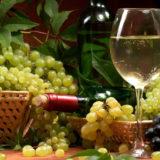 любительское виноградарство