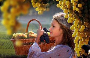 Как лечатся виноградом