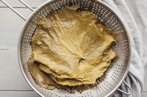 подготовка виноградных листьев к маринованию